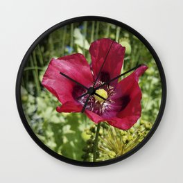 Pretty Purple Poppy Flower Wall Clock