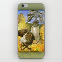 ostrich iPhone & iPod Skins featuring Ostrich by Natalie Berman