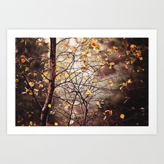 Last days of Autumn  Art Print