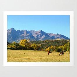 Dallas Creek Meadows, Colorado Art Print