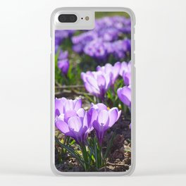 Purple Crocuses Clear iPhone Case