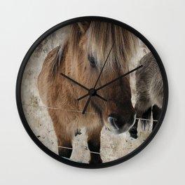 snowy Icelandic horse Wall Clock