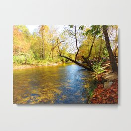 On the Hooch Metal Print