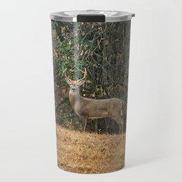 Buck At Pinson Mounds Travel Mug