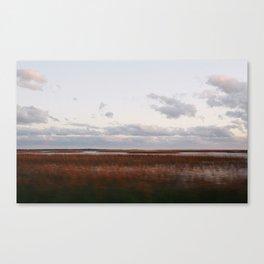 Tybee Marsh Canvas Print
