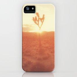 Desert Life iPhone Case