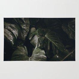 tropical xvii Rug