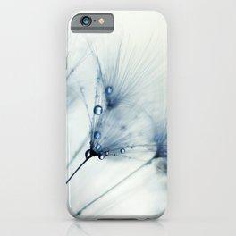 dandelion blue II iPhone Case