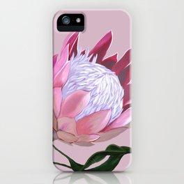 King Protea I iPhone Case