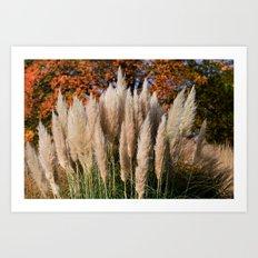 Pampass Grasses Art Print