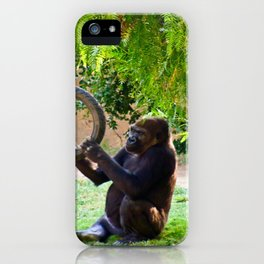 Happiness is a Tire Swing iPhone Case