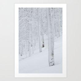 Snow covered forest winter wonderland Art Print