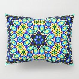 Splendid Pillow Sham