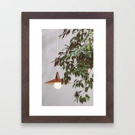 Lamp & Plant Framed Art Print