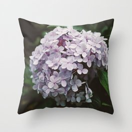 Hydrangea in Dalat's garden Throw Pillow