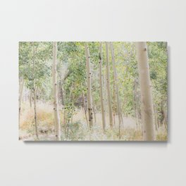 The Aspen Grove Metal Print