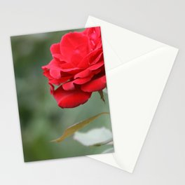 Red Forever Stationery Cards