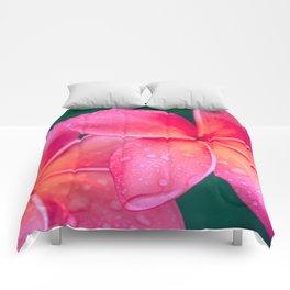 Aloha Hawaii Kalama O Nei Pink Tropical Plumeria Comforters