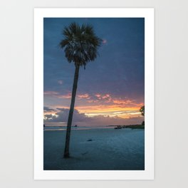 one palm tree.  Art Print