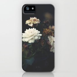 You're the One I Dream About iPhone Case
