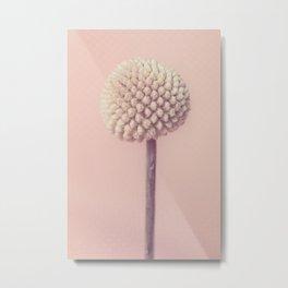 Lollipop Metal Print