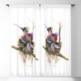 Hummingbird nest Blackout Curtain