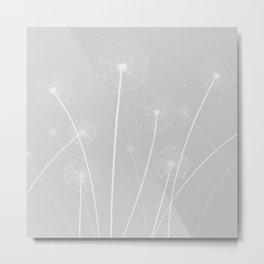 Dandelions Metal Print