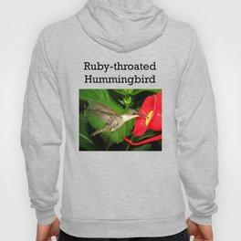 Hovering hummingbird 27 Hoody