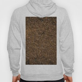 Needle Carpet Two Hoody