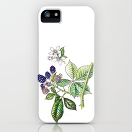 Blackberries iPhone Case