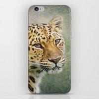 leopard iPhone & iPod Skins featuring Leopard by Pauline Fowler ( Polly470 )