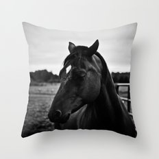 The Secret of the Horse Throw Pillow