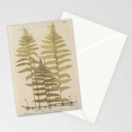 Vintage Fern Botanical Stationery Cards