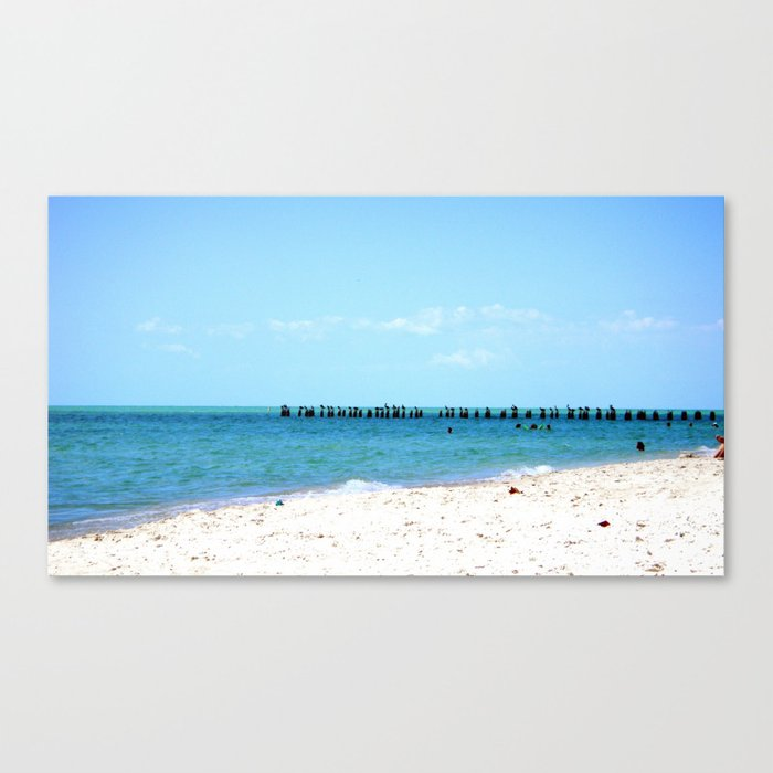 Beach & Birds Canvas Print