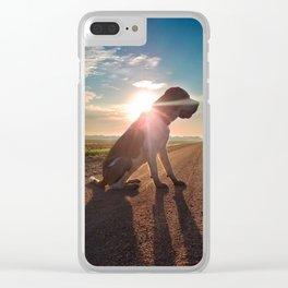 Sunrise Saint Bernard Clear iPhone Case