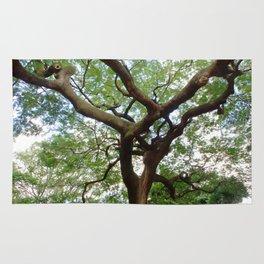 Sky Roots Rug