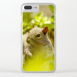 Squirrel! Clear iPhone Case