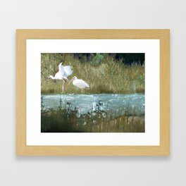 Marsh Birds Framed Art Print