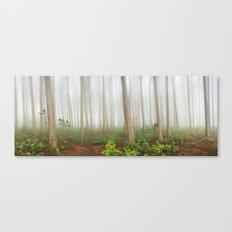 Mystical Wood Canvas Print