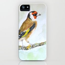 European goldfinch on tree branch iPhone Case