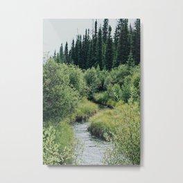 Grassy Creek Metal Print