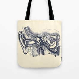 Inner ear anatomy Tote Bag