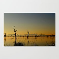 Tranquility - SOLD Canvas Print