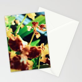 Mini Buds Stationery Cards