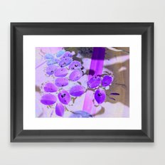Mini Water Lilies and Water Bug Framed Art Print