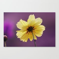 Yellow solitaire 52 Canvas Print