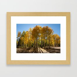 Autumn Blaze outside of Crested Butte, Colorado for #Society6 Framed Art Print
