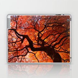 Ephemeral - Fall Maple Leaves, Nature Photography Laptop & iPad Skin