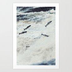 Jumping the Falls  Art Print