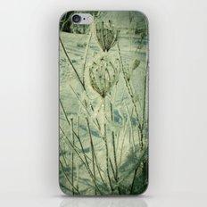 Ice Flower iPhone & iPod Skin